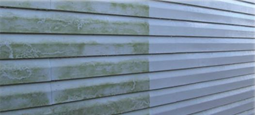 Residential Window Cleaning Services - Siding Cleaning